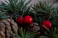 Zusammensetzung von Weihnachten-pinecone, Niederlassungen von Hollies auf grünem hölzernem Hintergrund lizenzfreie stockfotografie
