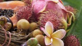 Zusammenstellung der exotischen tropischen thailändischen Frucht einschließlich Papaya, Rambutan, Dragonfruit, Longan, Mangostanf stock video