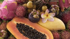 Zusammenstellung der exotischen tropischen thailändischen Frucht einschließlich Papaya, Rambutan, Dragonfruit, Longan, Mangostanf stock video footage