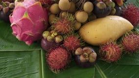 Zusammenstellung der exotischen tropischen thailändischen Frucht einschließlich Rambutan, dragonfruit, Longan, Mangostanfrucht un stock video