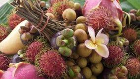 Zusammenstellung der exotischen tropischen thailändischen Frucht einschließlich Rambutan, dragonfruit, Longan, Mangostanfrucht un stock footage