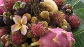 Zusammenstellung der exotischen tropischen thailändischen Frucht einschließlich Rambutan, dragonfruit, Longan, Mangostanfrucht un stock video footage