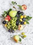 Zusammenstellung der frischen Frucht - Trauben, Birnen, Äpfel, Pflaumen auf einem hellen Hintergrund Lizenzfreie Stockfotos