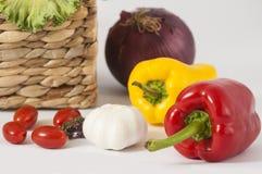 Zusammenstellung des Frischgemüses des Gartens stockbild