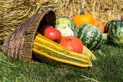 Zusammenstellung des Frischgemüses Wassermelone, der Kürbise und der Zucchini, Tomate, Mais, Pfeffer im alten Weidenkorb auf de lizenzfreies stockfoto