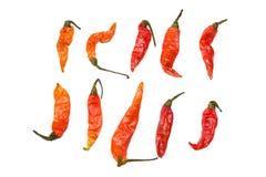 Zusammenstellung des getrockneten Paprika-Pfeffers Stockbild