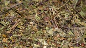 Zusammenstellung des trockenen der drehenden Tees und Kräuter stock footage