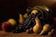 Zusammenstellung einiger Herbstfrüchte Stockfotografie