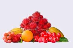 Zusammenstellung von den Früchten lokalisiert auf weißem Hintergrund Stockfotos