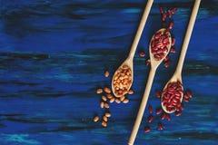 Zusammenstellung von Gartenbohnen im hölzernen Löffel auf dunkelblauem hölzernem b stockbilder
