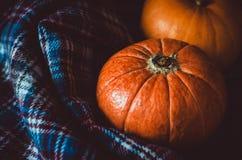 Zusammenstellung von orange Kürbisen auf dunklem Hintergrund Fallsymbol, Danksagungs-Tageskonzept Stillleben, rustikale Art Lizenzfreies Stockfoto