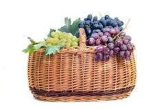 Zusammenstellung von reifen süßen Trauben im Korb Stockfoto