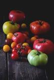 Zusammenstellung von Tomaten Stockbild