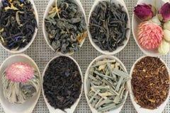Zusammenstellung von verschiedenen Arten des Tees in einem hölzernen Löffel Stockfoto