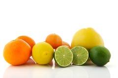 ZusammenstellungsZitrusfrucht Lizenzfreies Stockbild