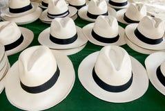 Zusatz - Panama-Hüte stockbild