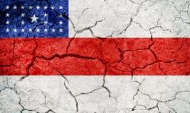 Zustand von Amazonas, Staat von Brasilien, Flagge Lizenzfreie Stockfotos