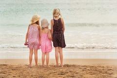 3 zusters bevinden zich op beachfront die de oceaan onder ogen zien Royalty-vrije Stock Foto's