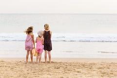 3 zusters bevinden zich op beachfront die de oceaan onder ogen zien Stock Foto's