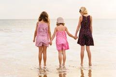 3 zusters bevinden zich op beachfront die de oceaan onder ogen zien Royalty-vrije Stock Afbeeldingen