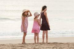 3 zusters bevinden zich op beachfront terug bekijkend een persoon op sh Stock Afbeelding