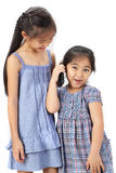 2 zusters op witte achtergrond Royalty-vrije Stock Fotografie