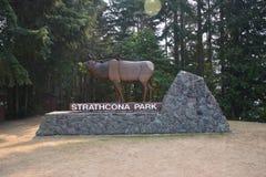 Zutritt unterzeichnen herein Strathcona-Park Kanada lizenzfreies stockbild