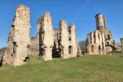 Zviretice城堡废墟  免版税库存图片