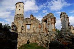 Zviretice kasztelu ruiny Obraz Royalty Free