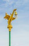 Zwaan Aziaat Royalty-vrije Stock Foto