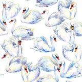 Zwaan De tekening van de zwaanwaterverf Het naadloze patroon van de zwaantroep royalty-vrije illustratie