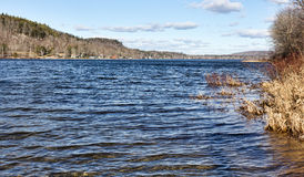 Zwaanmeer in de Winter met Bankwezen aan Recht Stock Afbeeldingen