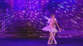 Zwaanmeer - Ster van het Ballet van Moskou stock footage