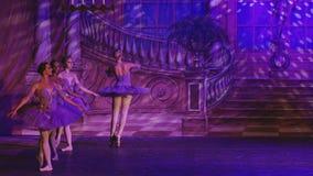 Zwaanmeer - Ster van het Ballet van Moskou stock video