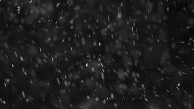 Zwaar dalende witte deeltjes tegen een zwarte achtergrond stock video