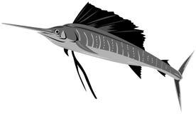 Zwaardvissen Stock Foto's