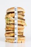 Zwaarlijvige Hamburger Royalty-vrije Stock Afbeeldingen