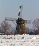 Zwanen bij de molen Stock Foto's