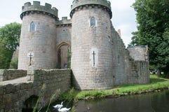 Zwanen en kasteel Royalty-vrije Stock Foto's