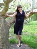 Zwanger stock afbeelding