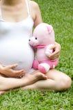 Zwanger detail die van handen houden Royalty-vrije Stock Afbeelding