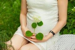 Zwanger meisje in kledingszitting in de tuin Stock Foto's