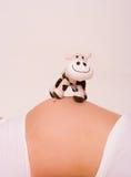 Zwanger met koe Stock Afbeelding