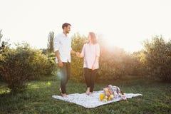 Zwanger paar op picknick Royalty-vrije Stock Foto's