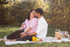 Zwanger paar op picknick Royalty-vrije Stock Afbeeldingen