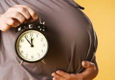 Zwanger wijfje stock foto