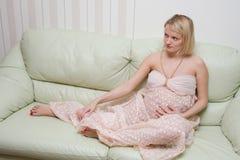 Zwanger wijfje Stock Afbeelding