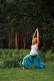 Zwanger yoga prenataal moederschap die verschillende oefeningen doen in het park op het gras, ademhaling, het uitrekken zich, sta stock afbeelding