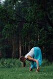 Zwanger yoga prenataal moederschap die verschillende oefeningen doen in het park op het gras, ademhaling, het uitrekken zich, sta royalty-vrije stock foto's