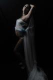 Zwangere blauwe bloem 3 van de dame transparante doek Royalty-vrije Stock Fotografie